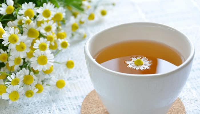 Remedios Para Los Gases Estomacales Naturales