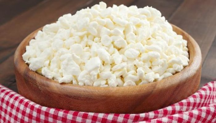 como hacer queso cottage