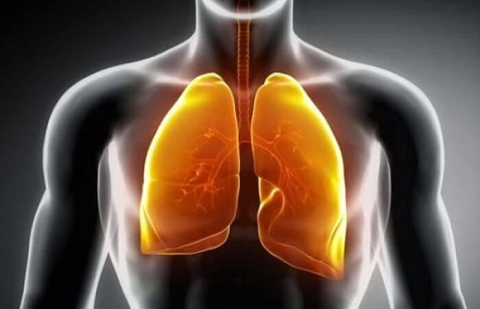 Tratamiento para la mucosidad en los pulmones