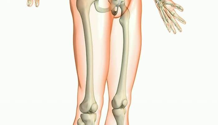 Interesante.. ¿Sabes Cuál es El hueso más Fuerte del cuerpo Humano?